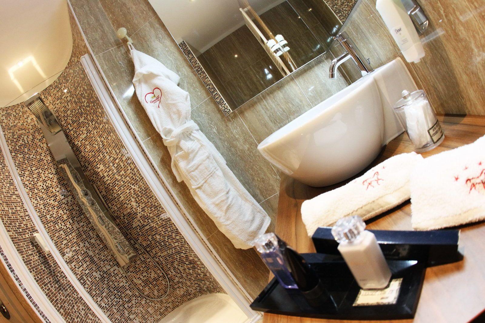 Bagno della camera Loving di Hotel Cavallino Andalo