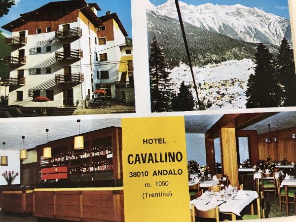 le origini di Hotel Cavallino