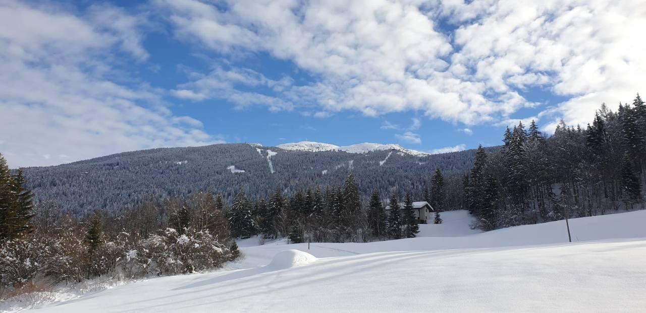 Paesaggi di neve
