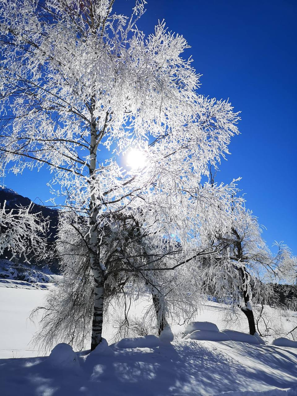 Neve in Paganella
